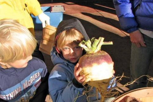 Last week, Bill's camera captured CSA members Zack and Lucas holding a huge CSA rutabaga.
