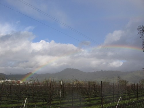 pot of gold at fetzer winery?