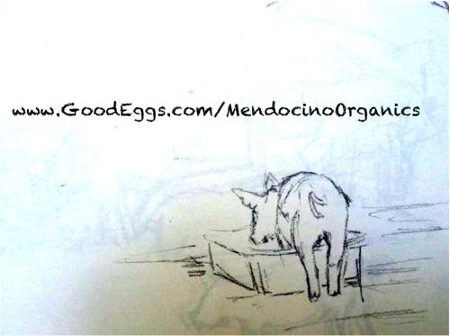 May 2 - Next Good Eggs Pork Delivery